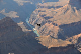 the_grand_canyon