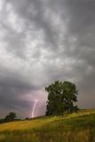 Morning thunder storm