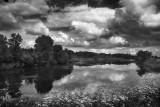Afternoon pond