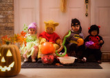 The trick or treat crew