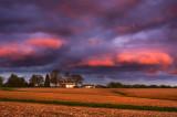 Sunset farm