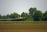 crop duster 1 copy.jpg