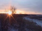 2008_12_24 Elke Captures a Moose at Sunrise