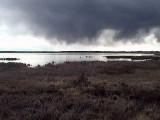 Storm Rolling In - Elke