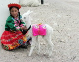 2008 Peru: bus to Puno