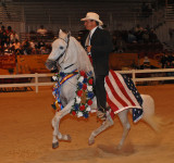 2006 / 2007 HORSE SHOWS