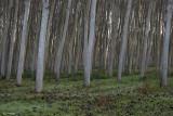 Landscapes_2