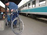 Składanie rowerów na dworcu w Belgradzie(IMG_6310.jpg)