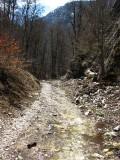 Czasami strumień płynął wraz ze ścieżką(IMG_6330.jpg)