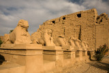 Karnak Temple: Ram-headed Sphinxes