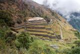 Inca Terracces