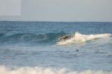 surfing delray  30069.jpg