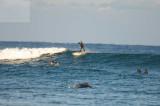 surfing delray  30106.jpg