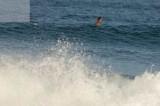 surfing delray  30210.jpg