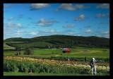 Bill's Farm Petoskey MI