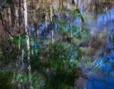 Ichetucknee River Trestle Point