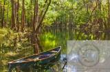 Ichetucknee River Canoe