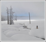 AA-Open-Cold River.jpg