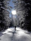 AA-Open-Winter Solitude.jpg