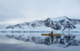 B-Assigned-Antarctic Solitude .jpg