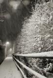 B-Assigned-Snowy Railing.jpg