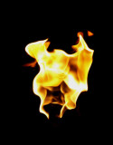 B-Open-Flame of Life.jpg