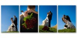 Jen & Steve's Sunny Autumn Wedding Album