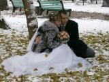 Snow provides a bit extra for wedding photos, Panfilov Park