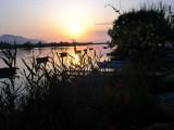 Sunset in L'Albufera