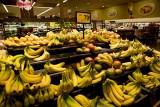 2/6/2010  Bananas