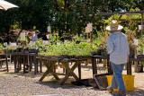 5/2/2010  Merritt College Landscape Horticulture Spring Plant Sale