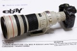 5/17/2010  1/5 scale model of Canon EF 600mm f/4L IS USM and EOS-1Ds Mark II
