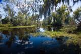 Lower Kenta Canal