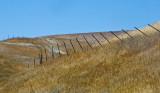 Sleeping hill twisted fence_MG_9601.jpg