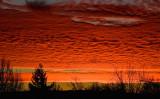 Sunset of the orange variety_MG_6368.jpg