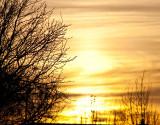 Winter sunset F0000104.jpg