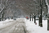 Snow doesnt obey traffic signs IMG_2050.jpg