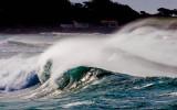 Wave glowing on the inside 7066.jpg