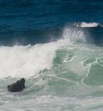 Wave vs rock _MG_1139.jpg