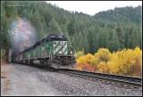Q-Train @ WintonTunnel