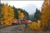 Z-Train @ Winton
