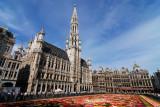 Tapis de fleurs sur la Grand Place de Bruxelles