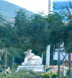Nandi Circle