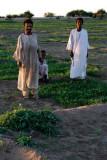 Farming the Nile