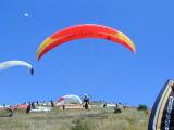 Sopot - Paragliding