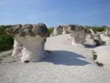 Stone Mushrooms  (Êàìåííè ãúáè)