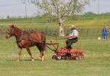 Amish_5