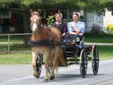 Amish_11