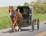 Amish5