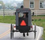 Amish 6